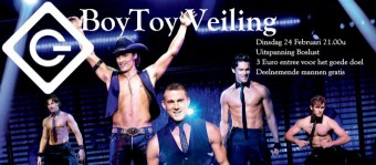 boytoy-veiling