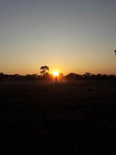Zambia Blog
