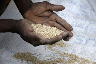 verhaal droogte ethiopie