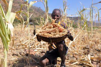 verhaal ethiopie droogte