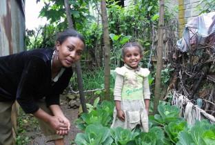 Droogte zaadjes Ethiopie